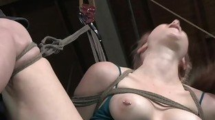 Hogtied and hair bounded sub fingered by male