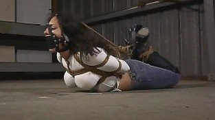 Another Jeans and Boots Hogtie