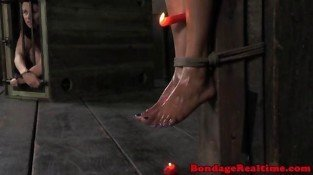 Suspended ebony endures wax play and pegs